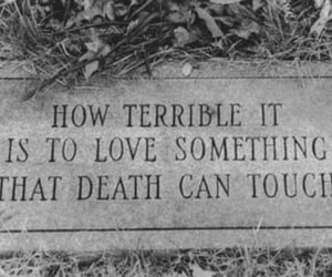 death, love, and pain image
