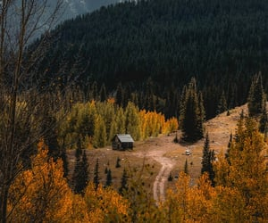 autumn, forest, and mountains image