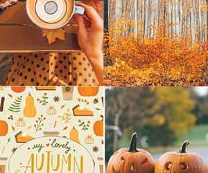 autumn, etsy, and leaves image