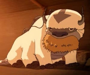 avatar, the, and appa image
