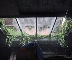 broken, ceiling, and flora image