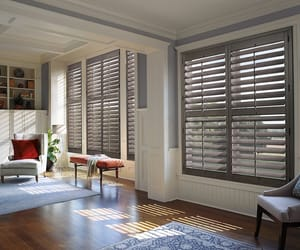window roller blinds, roller blinds calgary, and cellular shades calgary image