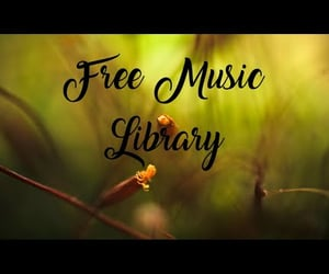 video, no copyright music, and free music no copyright image