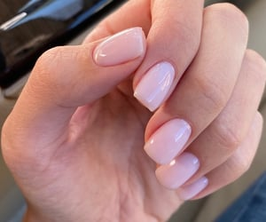 beige, manicure, and nails image