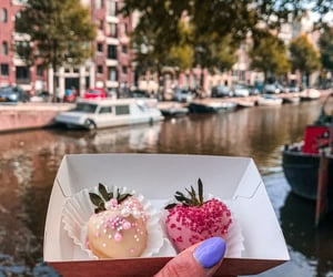 amsterdam, boats, and holland image