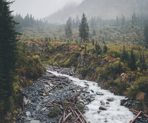 dreams, river, and seasons image
