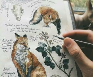 animals, beautiful, and pets image