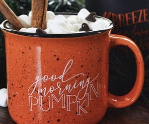 autumn, drinks, and fall image