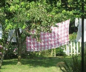 backyard, clothesline, and michigan image