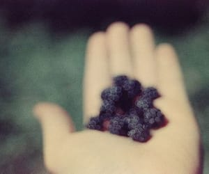 berries, black, and hand image