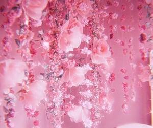 rosas, cute, and rose image