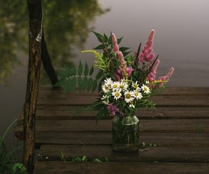 aesthetic, beauty, and flowers image