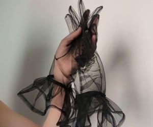 fashion, hand, and transparent image