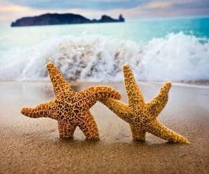 beach, pair, and sand image