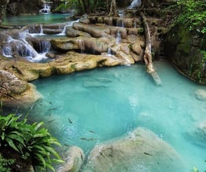 natural pool image