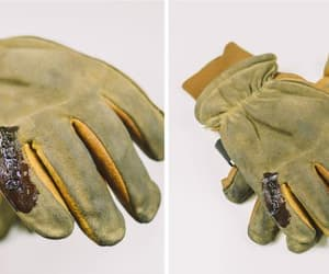 gloves and north star fur image