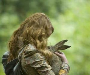 alice in wonderland, rabbit, and fairytale image
