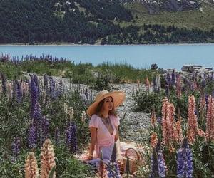 holiday, nature, and new zealand image