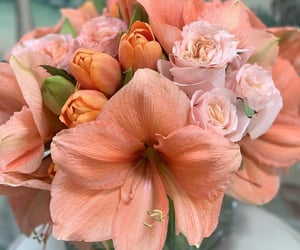 flores, flowers, and peach image