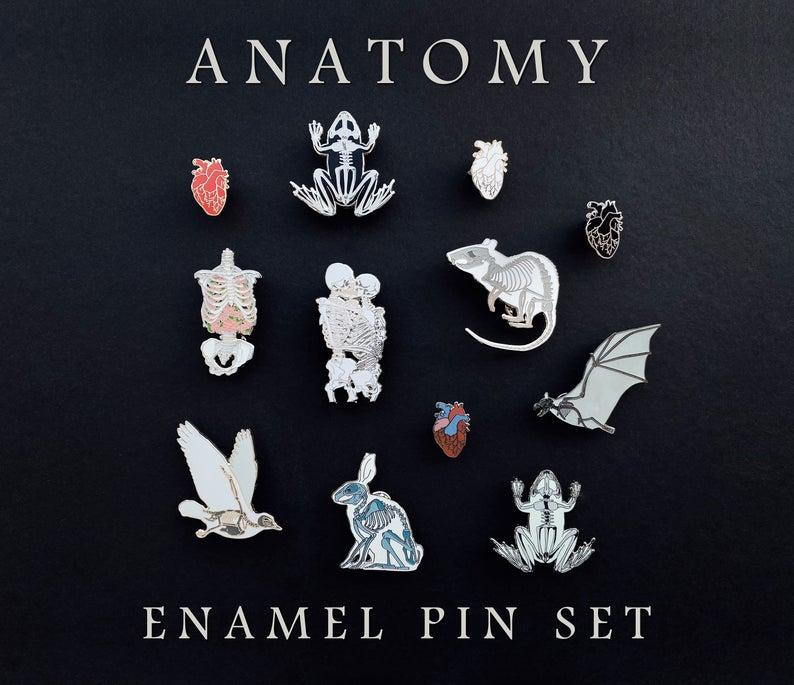 anatomical, etsy, and pin set image