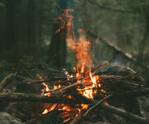 autumn, camp fire, and fire image