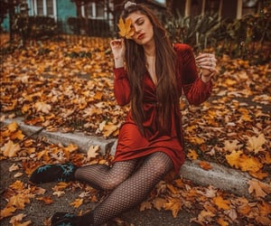 autumn, colors, and dreaming image