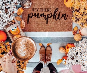 autumn, coffee, and decoration image