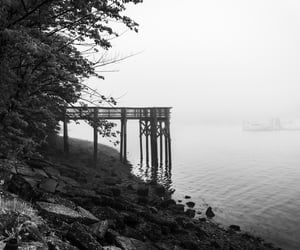autumn, b&w, and lake image