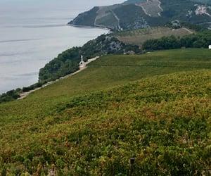 adriatic sea, Croatia, and landscape image