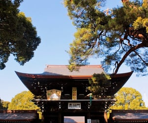 adventure, travel, and japan image