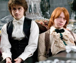 globet of fire, ron weasley and harry potter