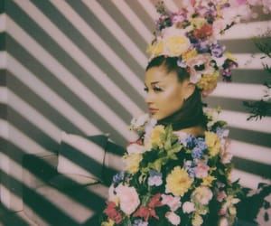 photoshoot, ariana grande, and singer image