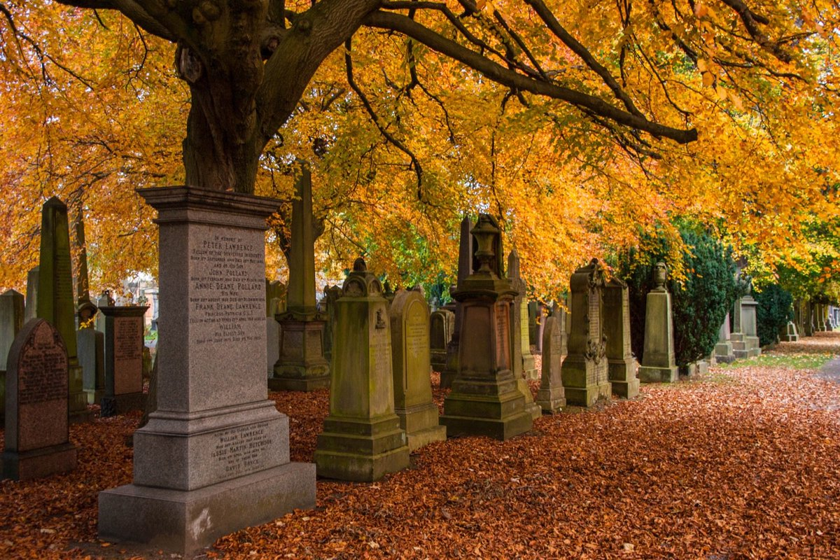 article, autumn, and death image
