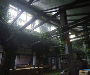 abandoned, library, and plants image