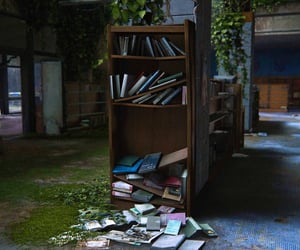 abandoned, bookcase, and books image