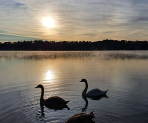 cloud, nature, and sunrise image