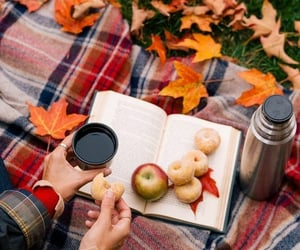 autumn colours, book, and coffee image