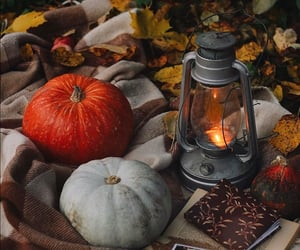 autumn, lantern, and leaves image