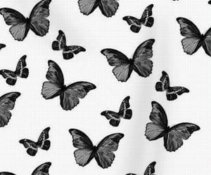 aesthetic, butterflies, and inspo image