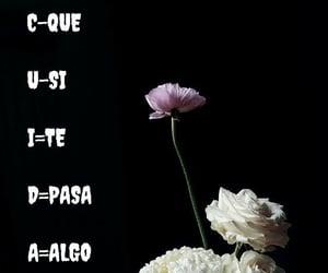 amor, frases español, and actitud image