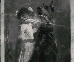 dog, faded, and memories image