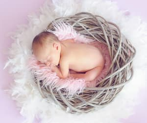 baby care, baby products, and newborn essentials image