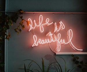 life, neon, and beautiful image