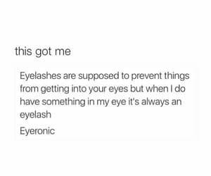 eyelashes, eyelash, and funny image