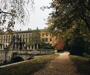 academia, dark academia, and autumn image