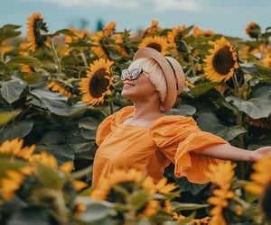canada, sunflower, and 🌻 image