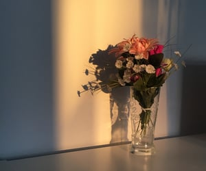 aesthetics, flowers, and room image