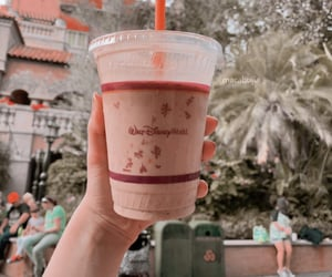 disney, universal, and drink image