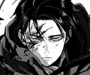 levi, manga, and attackontitan image