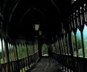 article, hogwarts, and cedric diggory image